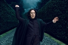 Harry Potter Deathly Hallows Pictures