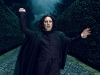 snape-fighting