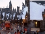 The Wizarding World of Harry Potter Theme Park