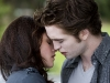 THE TWIGHLIGHT SAGA: NEW MOON